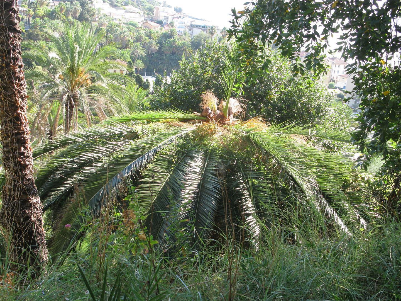 beodo-giardino-sperimentale-jpg