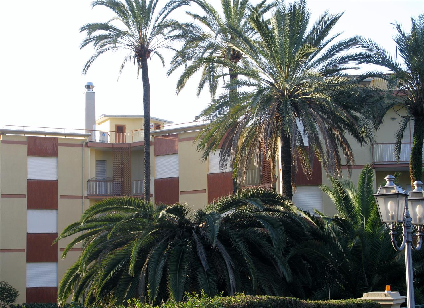 bordighera-centro-1-jpg