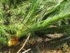 beodo-giardino-sperimentale-chute-jpg