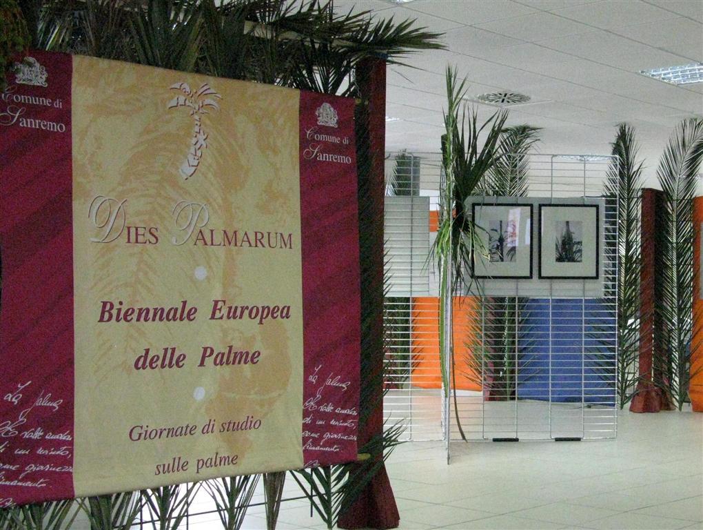 dies-palmarum-2012-1