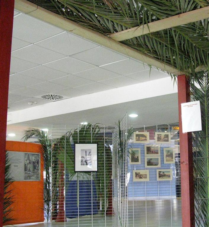 dies-palmarum-2012-19