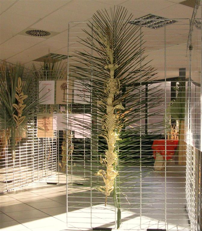 dies-palmarum-2012-8