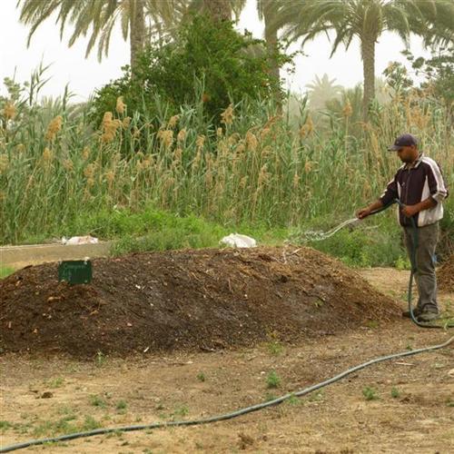 5ecologie-04-compost-gabes