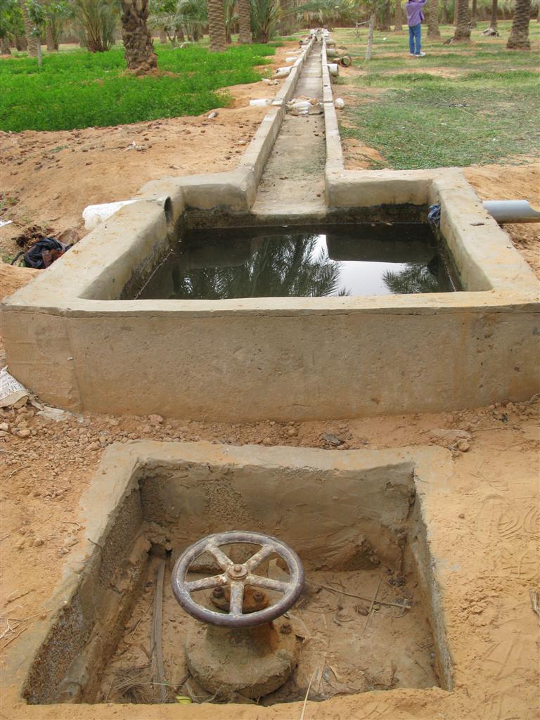 ghardaia-irrigation-16