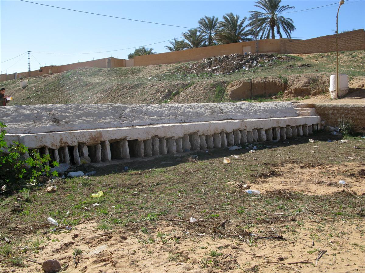 ghardaia-irrigation-5