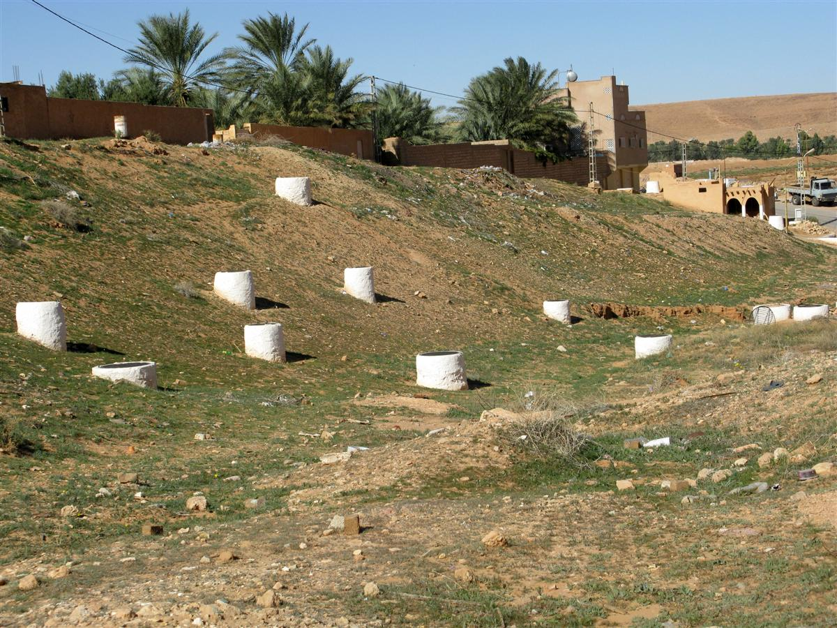 ghardaia-irrigation-7