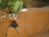 ghardaia-irrigation-11