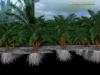 modelisation-racines-2