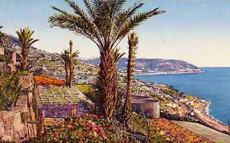 leaves-culture-romana-bordighera