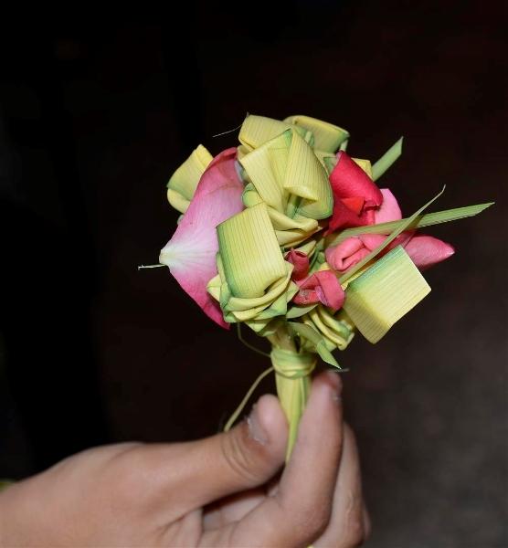 rameaux-egypte-palm-flower-elraheb