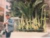rameaux-provence-nice-1994-001