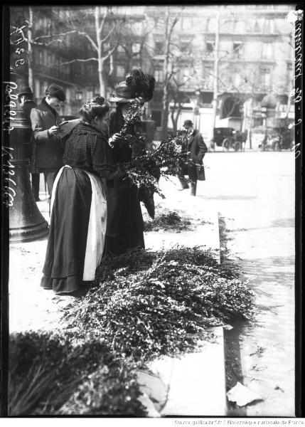 rameaux-france-1910-rol-bnf-04