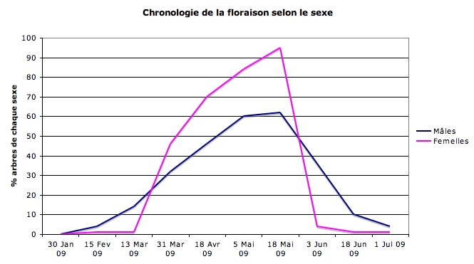 itphenologie_cycle_floraison_versus_sexe