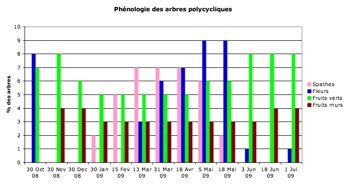 itphenologie_polycycliques