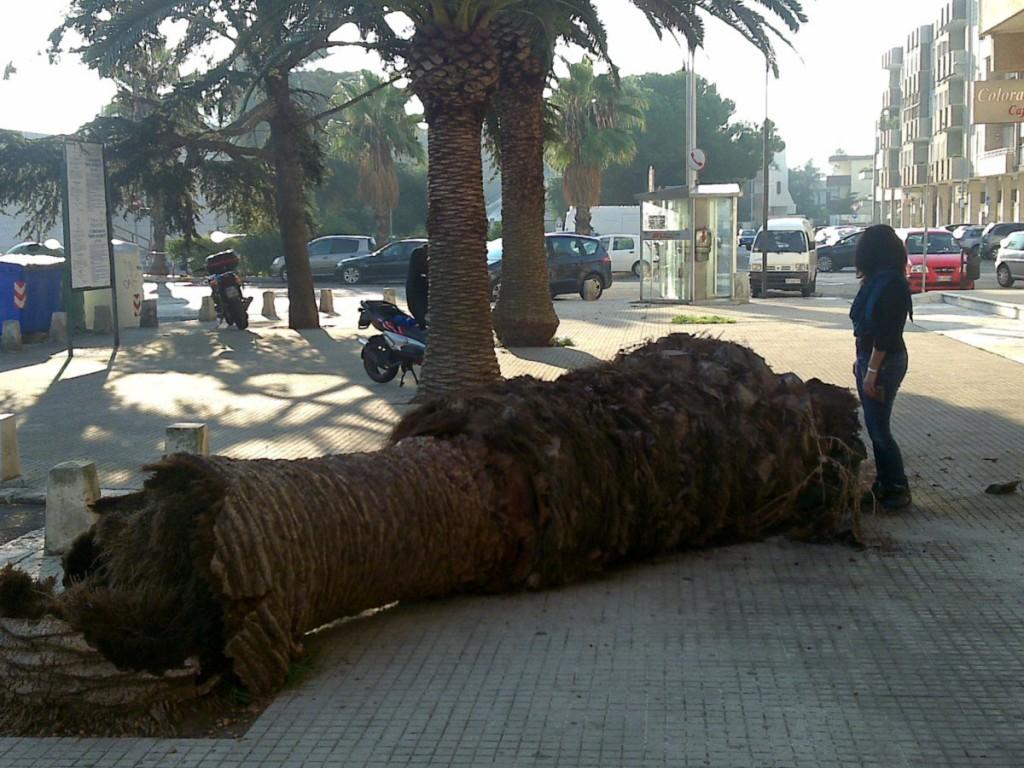 Lecce (Puglia 2011)